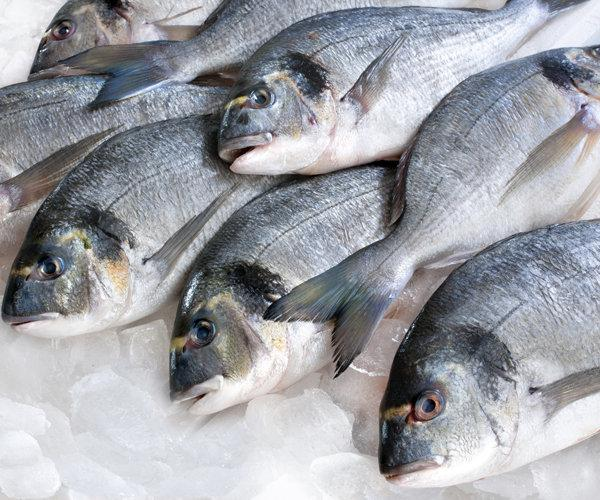 Как купить лучшую рыбу